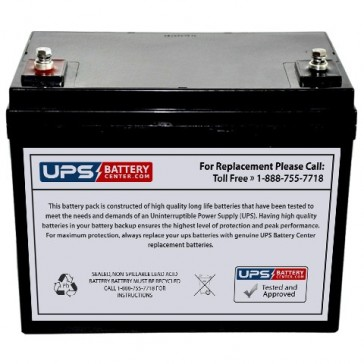 IBT 12V 60Ah BT60-12 Battery with F11 Insert Terminals